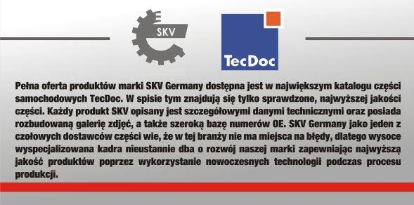 SKV_Germany_co_to_za_firma